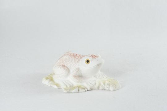 Лягушка Лола